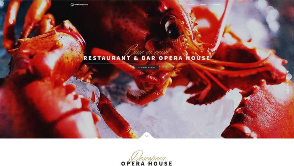 OperaHouse.ro